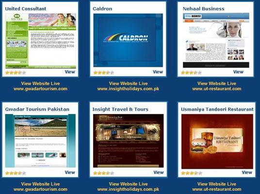 Product picture Corporate Web Template Designing with Flash Intro