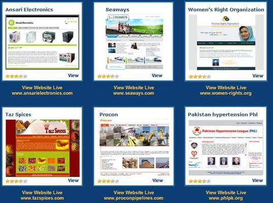 Product picture Customize Website Designing